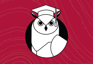 illustration of an owl in graduation cap