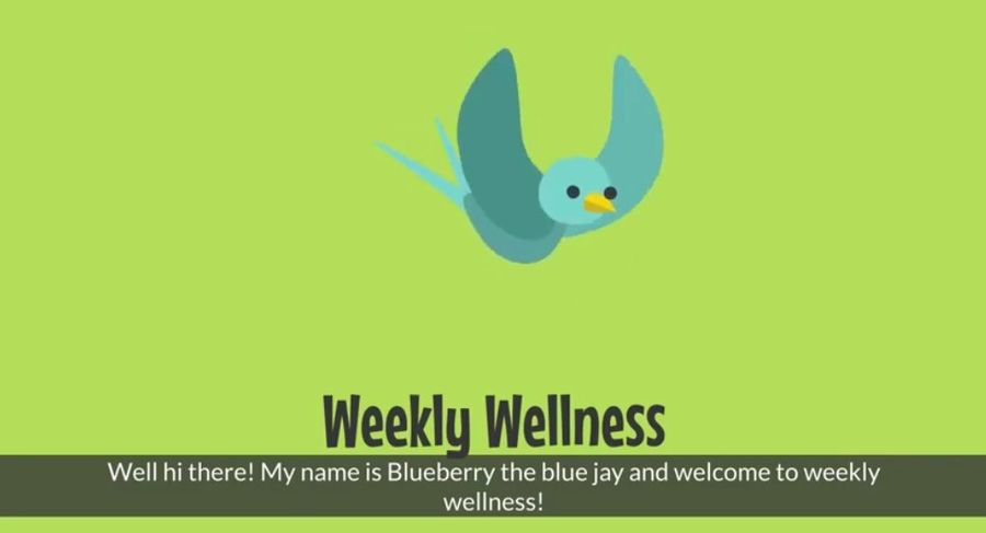 a cartoon bird named blueberry the blue jay with the text: Weekly Wellness
